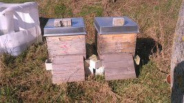 Bienenstand.2 - photo_2021-02-24_13-51-58.jpg
